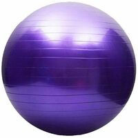 Mad Ally 65cm Exercise Ball- Purple