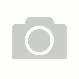 Sylvia P Surfer Girl Crop Top